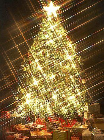 imagenes que se muevan de la navidad bella mariposa revolotea por el cielo feliz