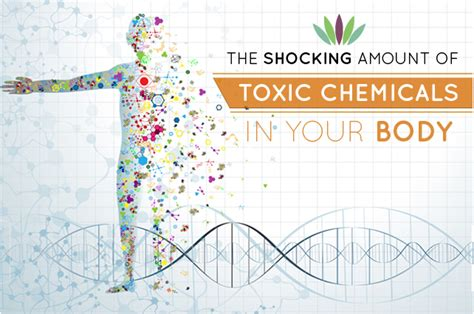 Deadly Ingredients That Can Kill Your Weight Loss Diet by The Shocking Amounts Of Toxic Chemicals In Your