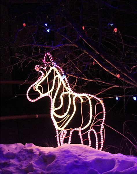 17 Best Images About Electric Safari 2012 On Pinterest Cheyenne Mountain Zoo Lights
