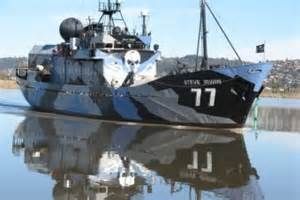 sea shepherd steve irwin sinks sea shepherd prepares fleet to return to the southern