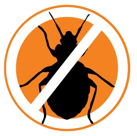 bed bugs control commercial bed bug control adelaide
