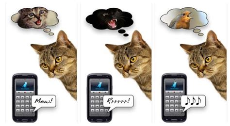to human translator 5 ridiculously silly cat apps to entertain you and your cat cattime