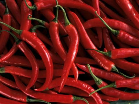 thai chili peppers photographic print at allposters com