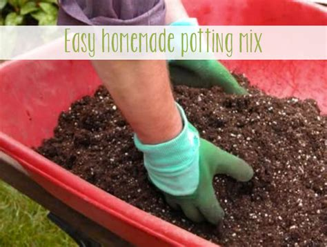 Best Soil Mix For Container Vegetable Garden Potting Mix Feat