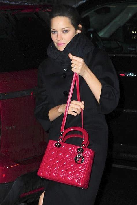 lady dior bag    magical luxury handbag