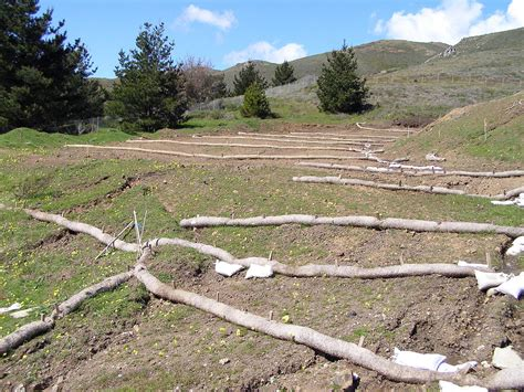 soil wikipedia soil conservation wikipedia