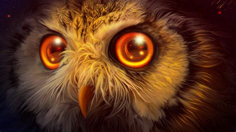mystic owl  wallpapers hd wallpapers id