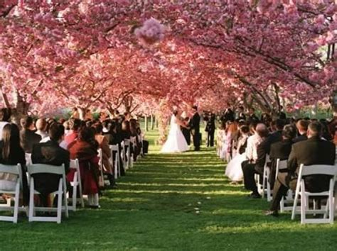 Bride on a Budget: 20 Free or Cheap Places to Get Married