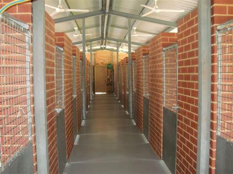 southern comfort kennel pender boarding kennels
