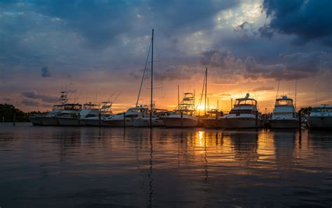 savannah boat rental bull river marina boat rentals dolphin tours and more