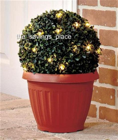 Outdoor Lighted Topiary Indoor Outdoor Led Lighted Potted Topiary Plant W Built In Timer 2 Sizes Ebay