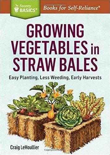 gardening   growing vegetables straw bale