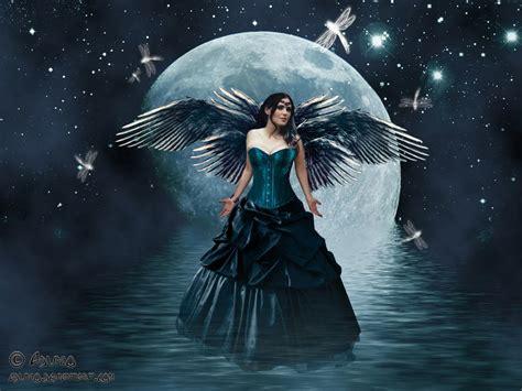 wallpaper dark fairy dark fairy wallpaper desktop clickandseeworld is all