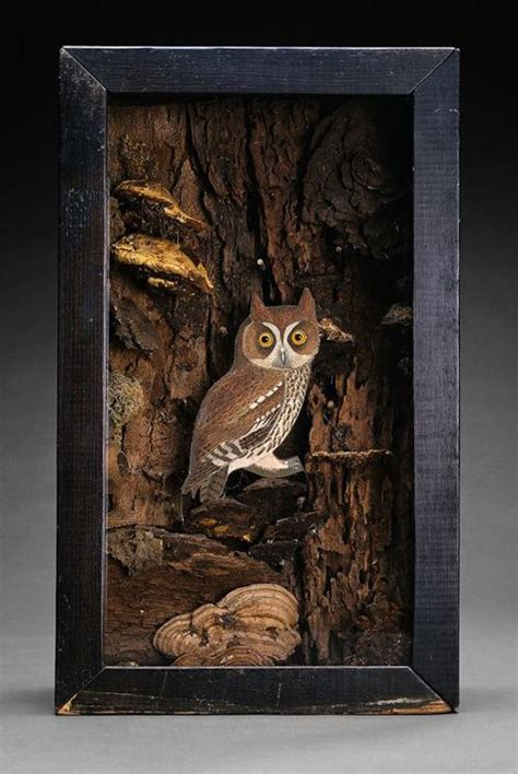 13 best joseph cornell images on pinterest owl box