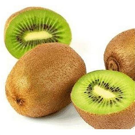 b q fruit plants adbinc cheez thailand mini kiwi fruit bonsai plants home