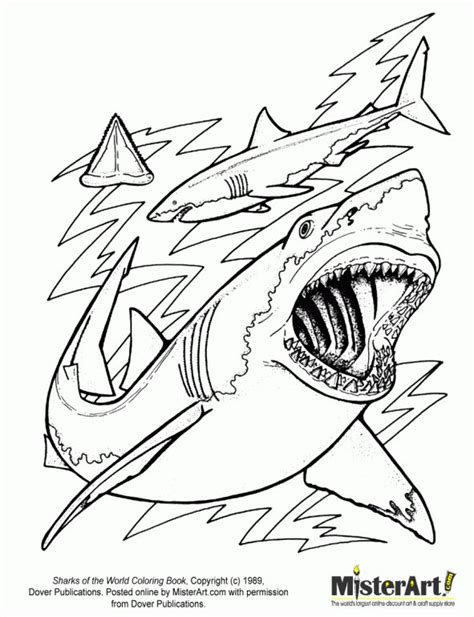 frilled shark coloring page 87 best images about shark coloring pages on pinterest