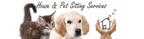 house pet sitting gallery