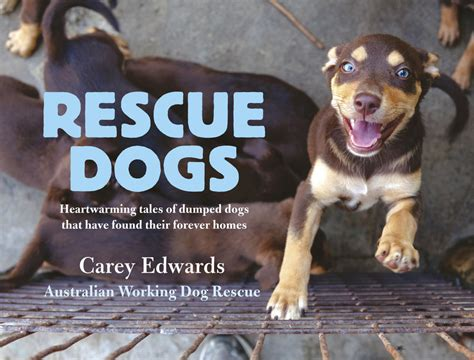 tales warming tales of rescue dogs who rescued their owners right back books rescue dogs heartwarming tales of dumped dogs that