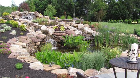 is a backyard pond an ecosystem is a backyard pond an ecosystem 28 images pond