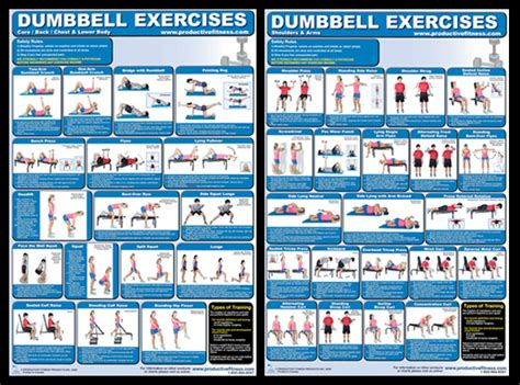 dumbbell exercise chart images