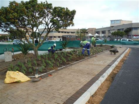 green acres landscaping green acres landscaping port elizabeth instant lawn