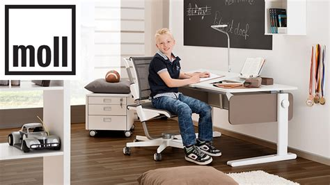 moll chion desk review moll desks and chairs back in action