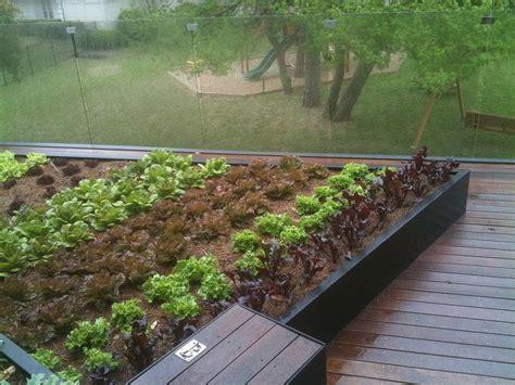 231 best urban garden roof top vegetable gardens images