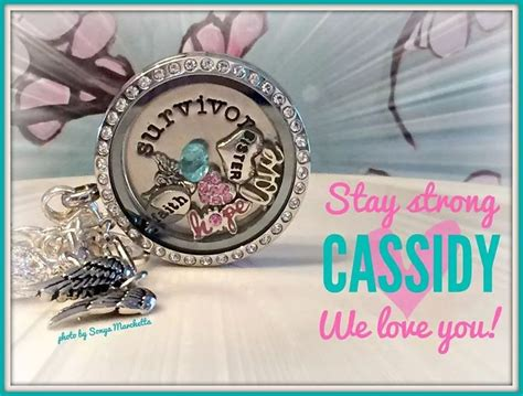 Origami Owl Dealers - origami owl my direct sales ideas origami