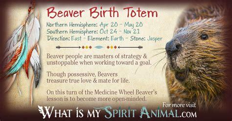 beaver totem birth sign native american zodiac native american astrology native american symbols