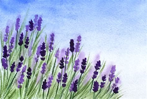lavendar paint image gallery lavender watercolor
