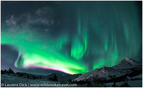 anchorage alaska northern lights northern lights anchorage alaska november