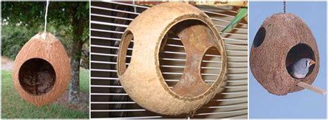 Sarang Burung Finch Kenari Dan Sejenisnya aneka tempat sarang berbahan tempurung kelapa klub burung
