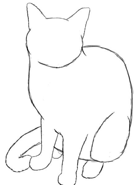 A Drawing Of A Cat by How To Draw A Cat Drawings Cat