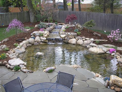 backyard fishing pond ponds and waterfalls