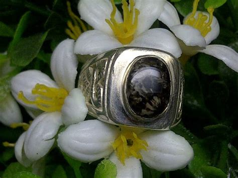 Batu Akik Bulu Macan Biru batu akik bulu macan hitam putih batu akik cincin