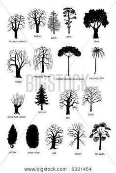 michigantreeidentificationbyleaf identify trees   leaves insidebookofleavesp