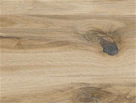 unterschied buche kernbuche decker massivholzm 246 bel holzarten