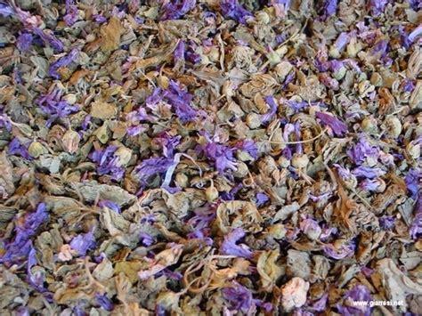 fiori secchi profumati composizione fiori secchi fiori secchi realizzare