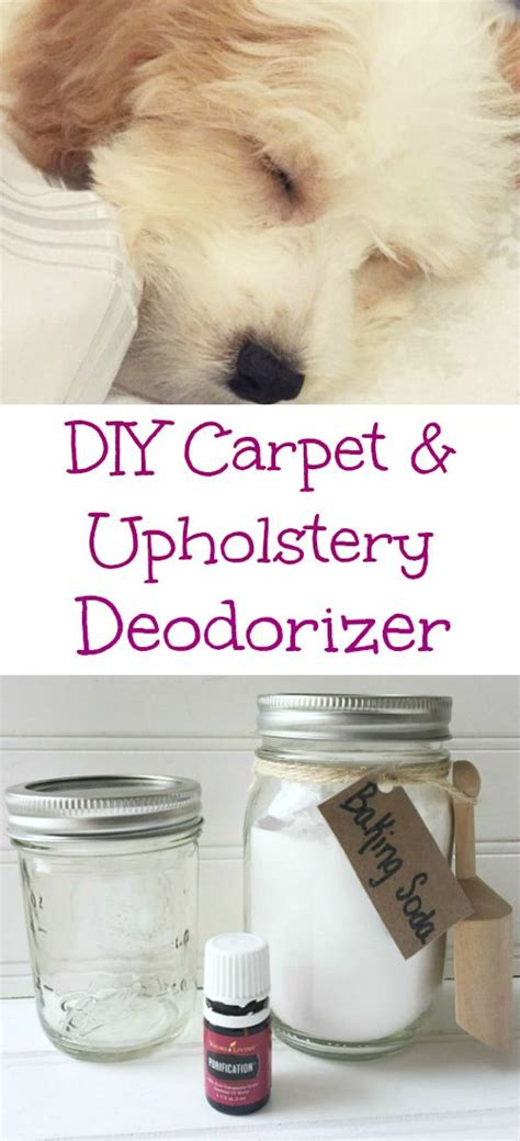 natural upholstery deodorizer best 20 homemade carpet powder ideas on pinterest diy