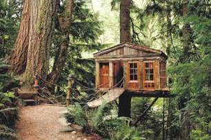 treehouse homes for sale top 10 tree houses design ideas we love