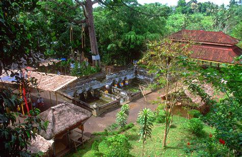 Gajah India bali gajah goa world for travel