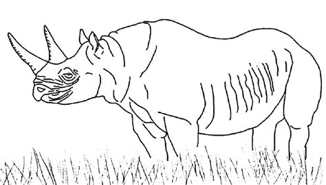 african savanna coloring pages bestofcoloring com