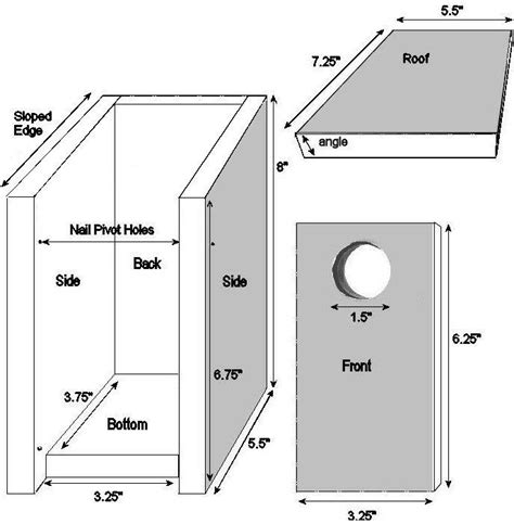 blue jay bird house plans bird house plans for blue jays