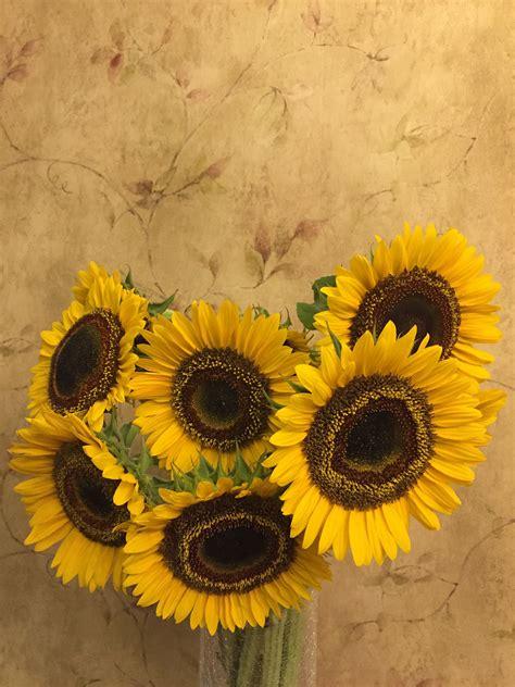 gambar menanam buket vas kuning bunga matahari
