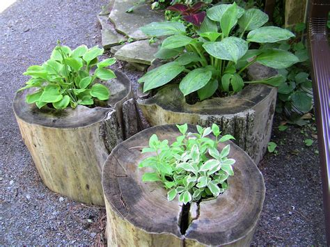 Tree Stump Planter Pot by Diy Outdoor Decorating Ideas Modern Magazin
