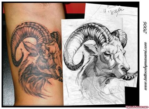 goat tattoo designs capricorn forearm tattoos goat search