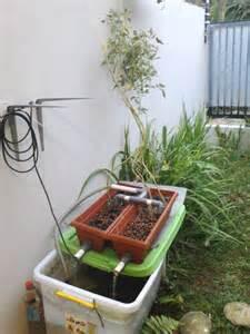 Kak Kecil Gagang Pipa hidroponik kak eko