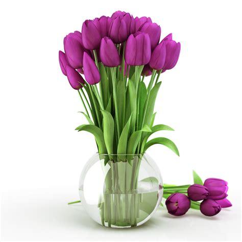 Tulip Bulbs In A Vase by 3d Tulips Vase