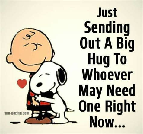 a big birthday hug books 25 best ideas about snoopy hug on snoopy