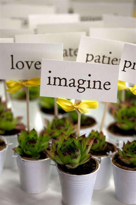 Plant Giveaways - plants as wedding decoration mitee